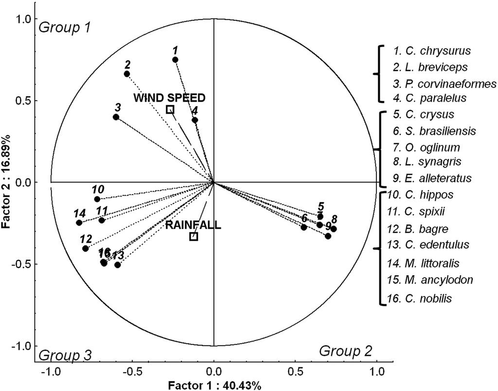 Figure 11.